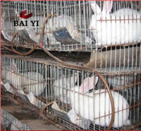 Commercial Cheap Metal Rabbit Breeding Cage With Plastic Tray For Sale