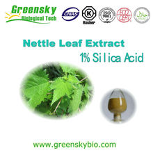 Natural nettle leaf extract powder