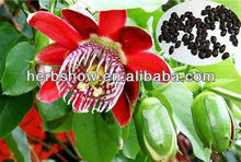 Passion Flowers seeds for growing