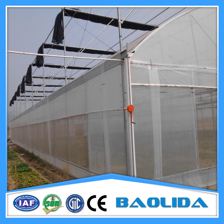Agriculture Greenhouse Projects From China Supplier