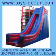 Inflatable slide Toadlick/inflatable super interactive/giant inflatable slide