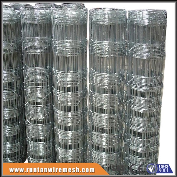 woven galvanized hinge joint cattle wire fence mesh