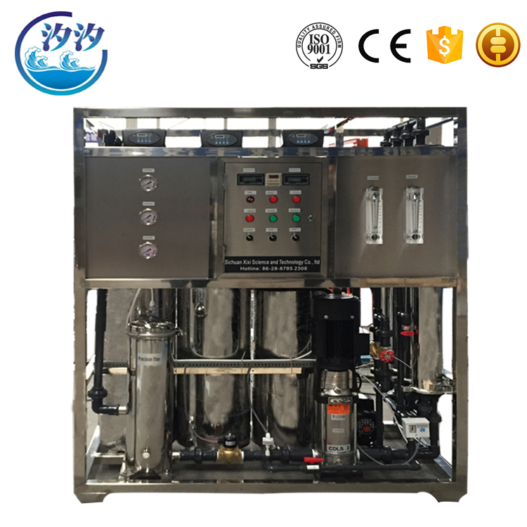 Drinking Water Treatment Plant RO 1000 lph Water Purification Plant Cost