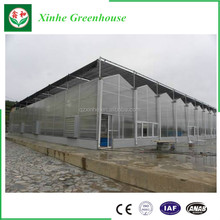 Hot sale polycarbonate corrugated plastic roofing sheets for agricultural greenhouse
