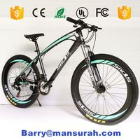mountain bikes sale factory direct all kind of price bmx bicycle with speed transmission