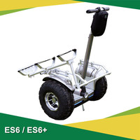 2016 Eswing new dc brushless motor adults e scooter