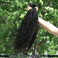 Hot Sale AAAAA Grade High Quality Wholesale Afro Kinky Curly Braiding Hair