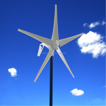 Efficient Off Grid Home Use 300W Small Wind Turbine