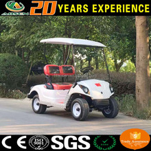 China cheap electric golf cruiser for sale with custom flag