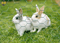 China factory price hexagonal wire mesh rabbit cage chicken fence