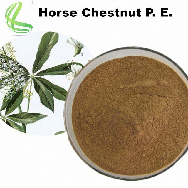 Factory Supply Best Quality Horse Chestnut Extract Aescin Powder