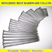 Factory Price Common Wire Nail common nails