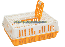 Plastic Collapsible Chicken Transport Cage/Turnover Crate