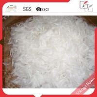 White duck down and feather filling material