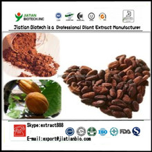 High quality cocoa beans extract powder