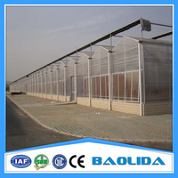 Multi Span Green Houses For Agriculture