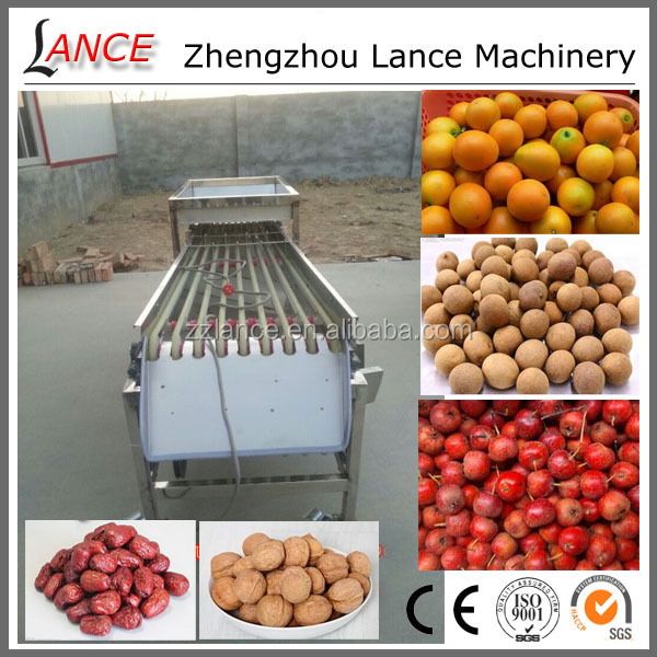 Professional fruit and vegetable sorting machine for date/walnut/haw/tomato/potato/orange with video
