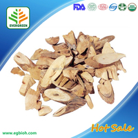 Organic best price chinese angelica p e