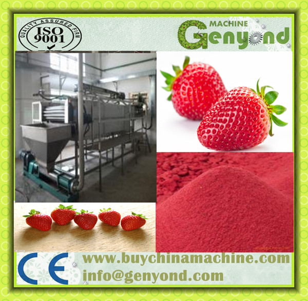 Quality Freeze Dried Strawberry Instant Powder Processing Line JYDFSB-005 Strawberry Slicing Machine