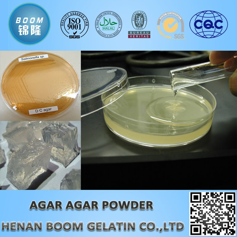 gracilaria agar agar powder for plant tissue culture