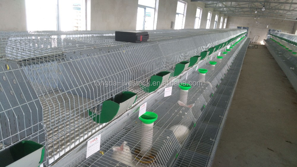 Hot selling laboratory animal cage with high quality pet rabbit cages