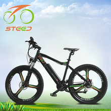 Optional color new model two wheeler electric bicycle singapore importer welcomed