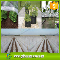 Ali Golden Trade Agriculture Nonwoven Waterproof Ground Cover