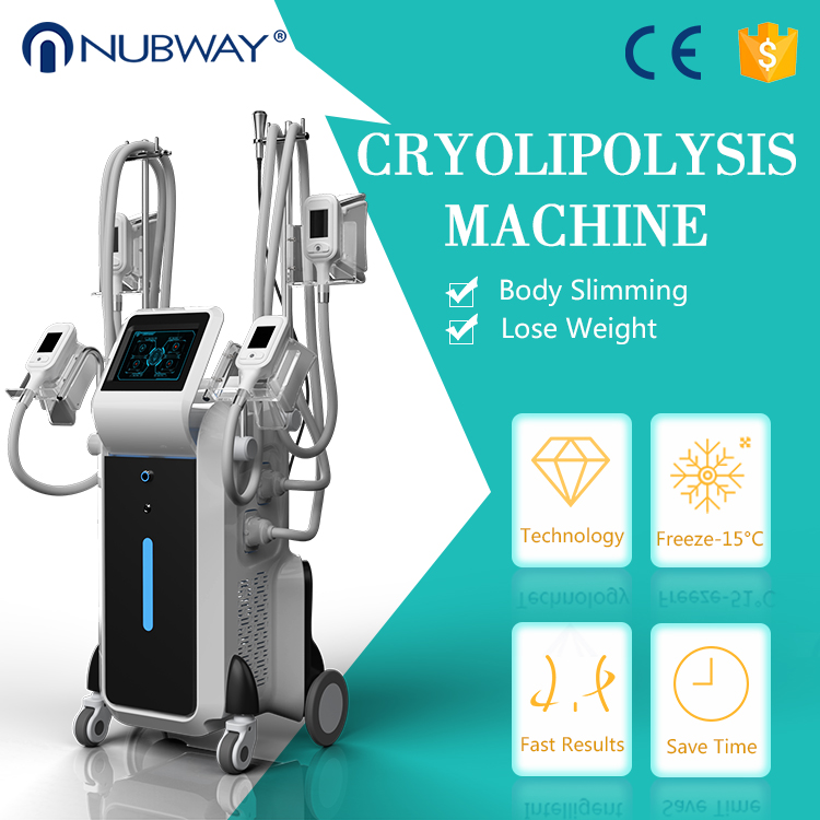 Professional body shaping slimming machine cryolipolysis weight loss with 4 cryo handles