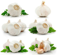 2014 crop farmer lowest garlic price in China