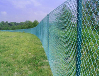 Galvanized and Plastic coated diamond chain link farm fencing