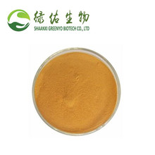 High Purity Raw Material Vitamin B9 Folic Acid Powder CAS 59-30-3