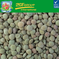 Dry Green Lentils With Good Quality