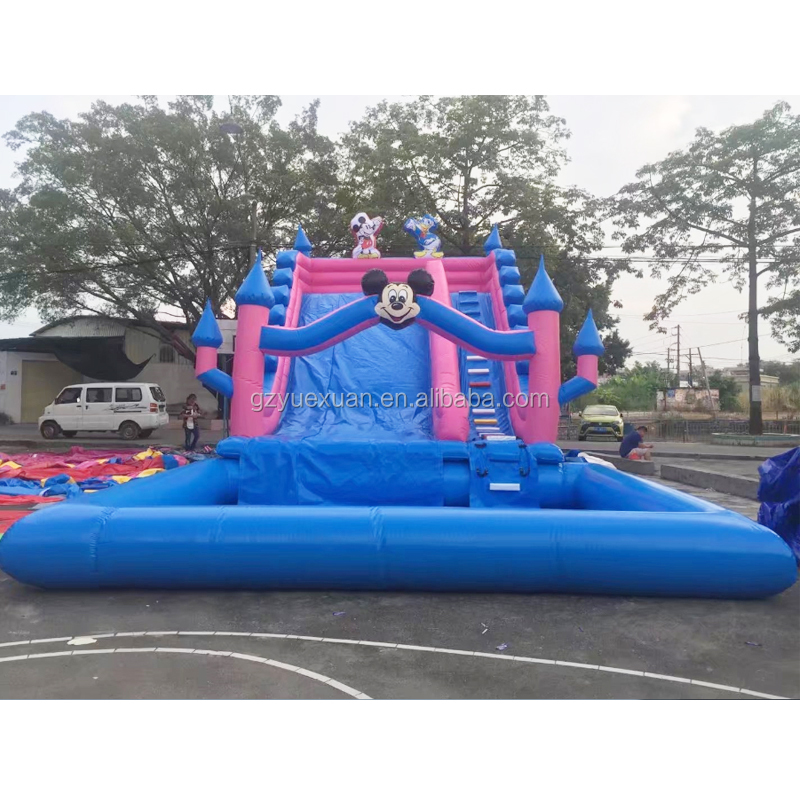 Chinese suppliers Inflatable character cartoon water slide,Inflatable pool slide for sale