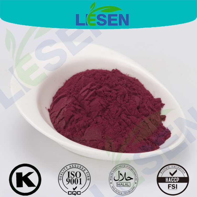 Sugar Beet Root Extract Powder with good price