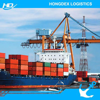 Maritime Shipping to Brazil Global Forwarding Transport Company in China