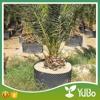 Large size good quality plastic air superoots control pot for big trees