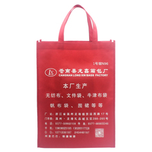 Factory direct promotion non woven gift bag non woven wine bag non-woven shopping bag guangdong