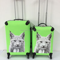 Children Cartoon Trolley Travel Car Luggage