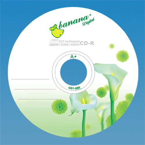 China wholesale blank disks A grade CD