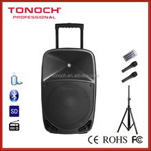 Professional 120W 15'' Portable Active Speaker