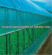 Blue LDPE greenhouse film with UV