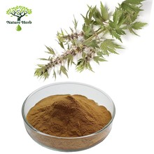 Pharmaceutical grade Motherwort Herb Extract Stachydrine hydrochloride