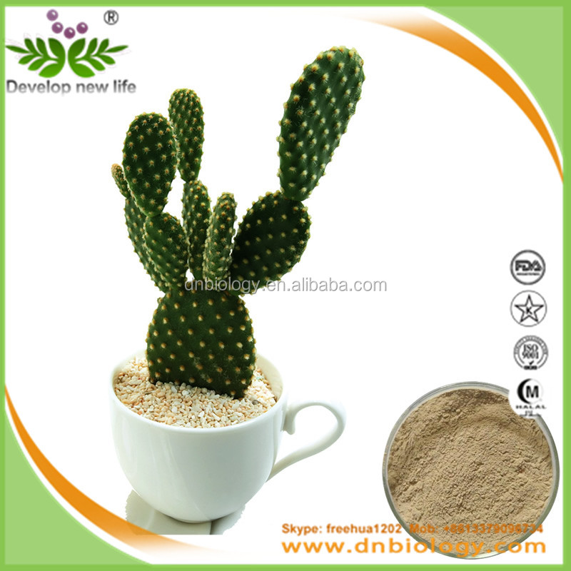 Good Quality 100% Pure Natural prickly pear Extract nopal cactus extract, prickly pear extract powder