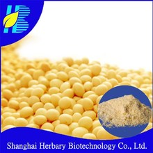 GMP manufacturer supply water soluble lecithin