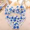 Wholesale professional design plus size pop up sexy girls China photos bra panty set for women