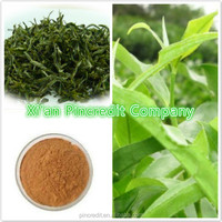 Free Sample Nature Organic Zenergreen Super Green Tea Extract