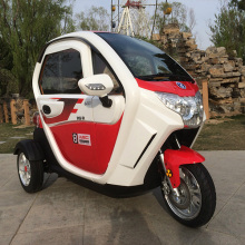 electric tricycle three wheel cargo electro globle hot