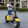 citycoco/seev/woqu electric motorcycle light weight electric 800w/1000w citycoco scooter