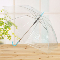 Professional eco-friendly poe bubble clear umbrella,transparent umbrella