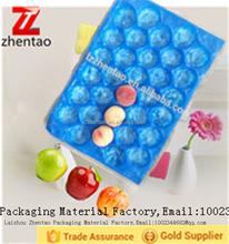 Free Sample Custom Wholesale Blister Stackable Perforated Plastic Tray for Fruit Packing